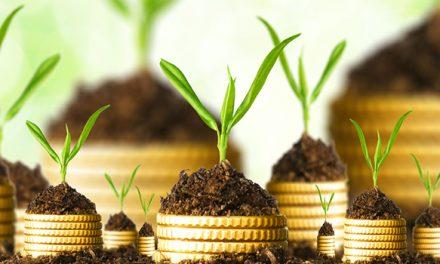 Il credito d'imposta del 20% degli investimenti effettuati nel mezzogiorno