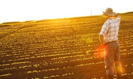 Un farmacista dipendente può aprire una P.IVA agricola – QUESITO