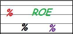 R.O.E. Return On Equity – QUESITO