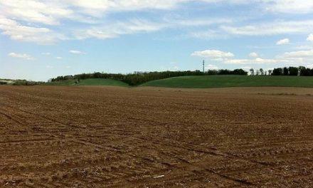 Terreni in concessione alle famiglie numerose